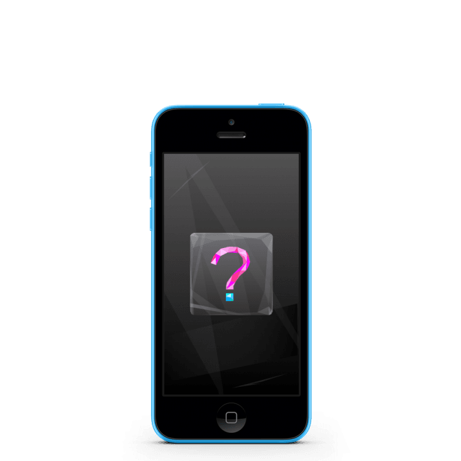 Touch IC iPhone 5C