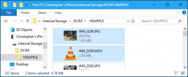 Folder ze zdjęciami 100APPLE PC